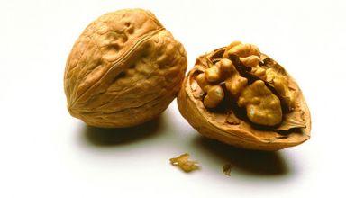 walnuts genome