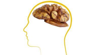 mental health and walnuts