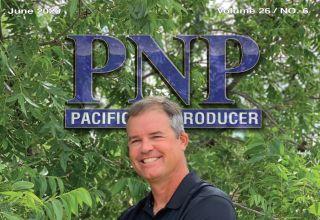 PNP 620