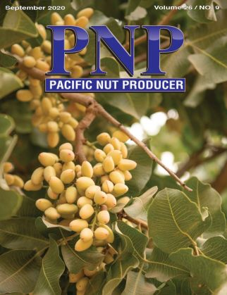 Pacific Nut Producer September Issue