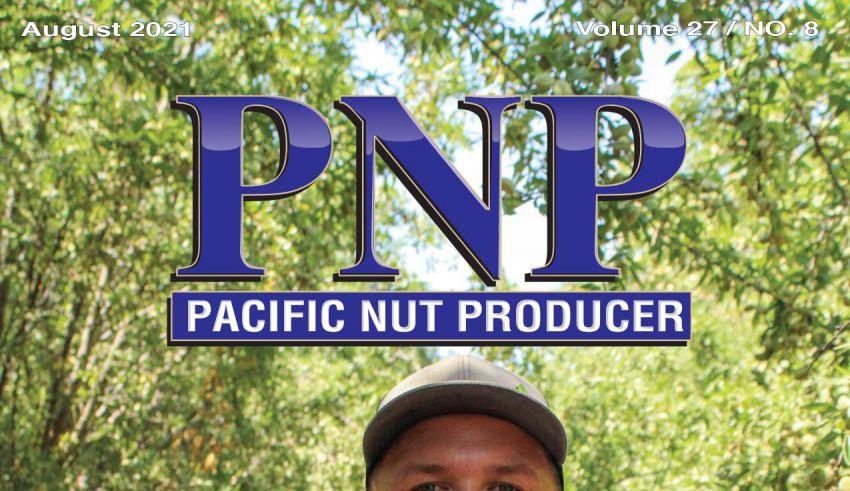 PNP821