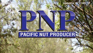 PNP921